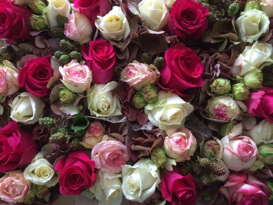 Blumen_8